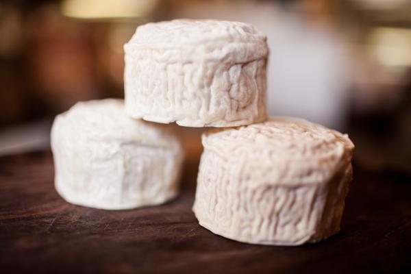 Cavaniola's_10_cheeses_lindsaymorris-3046.jpg
