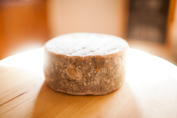 Cavaniola's_10_cheeses_lindsaymorris-3151.jpg
