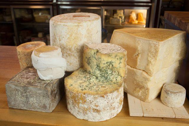 cheese_b.jpg