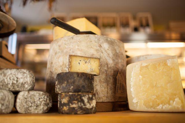 cheese_c.jpg