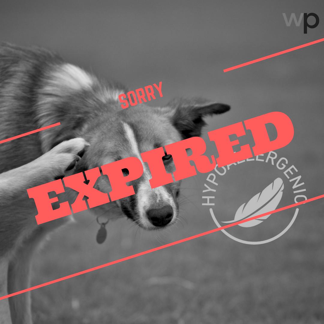 expired_hypoallergenic