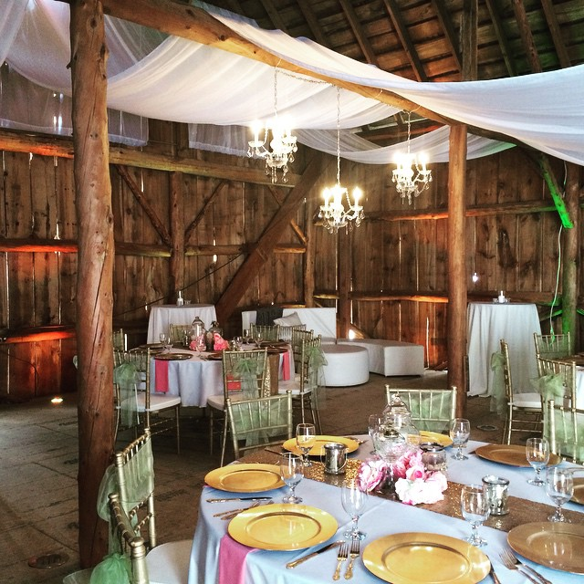 Draping & Decor Rentals by Geyer Wedding & Event Rentals