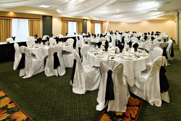 Wedding Reception at the Holiday Inn Mpls NW- Elk River