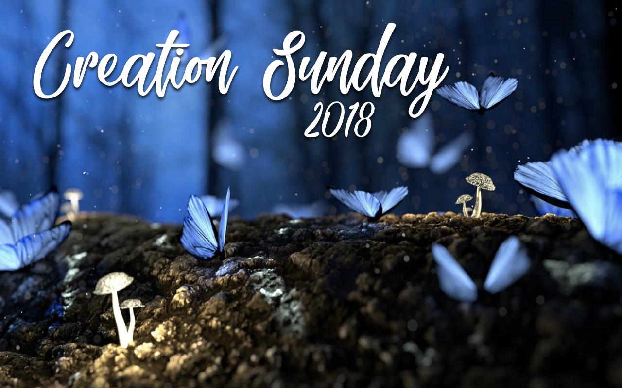 ts.2018.09.30 Creation Sunday.001.jpeg