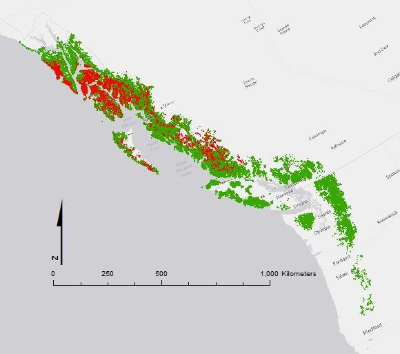 Yellow-cedar range and decline