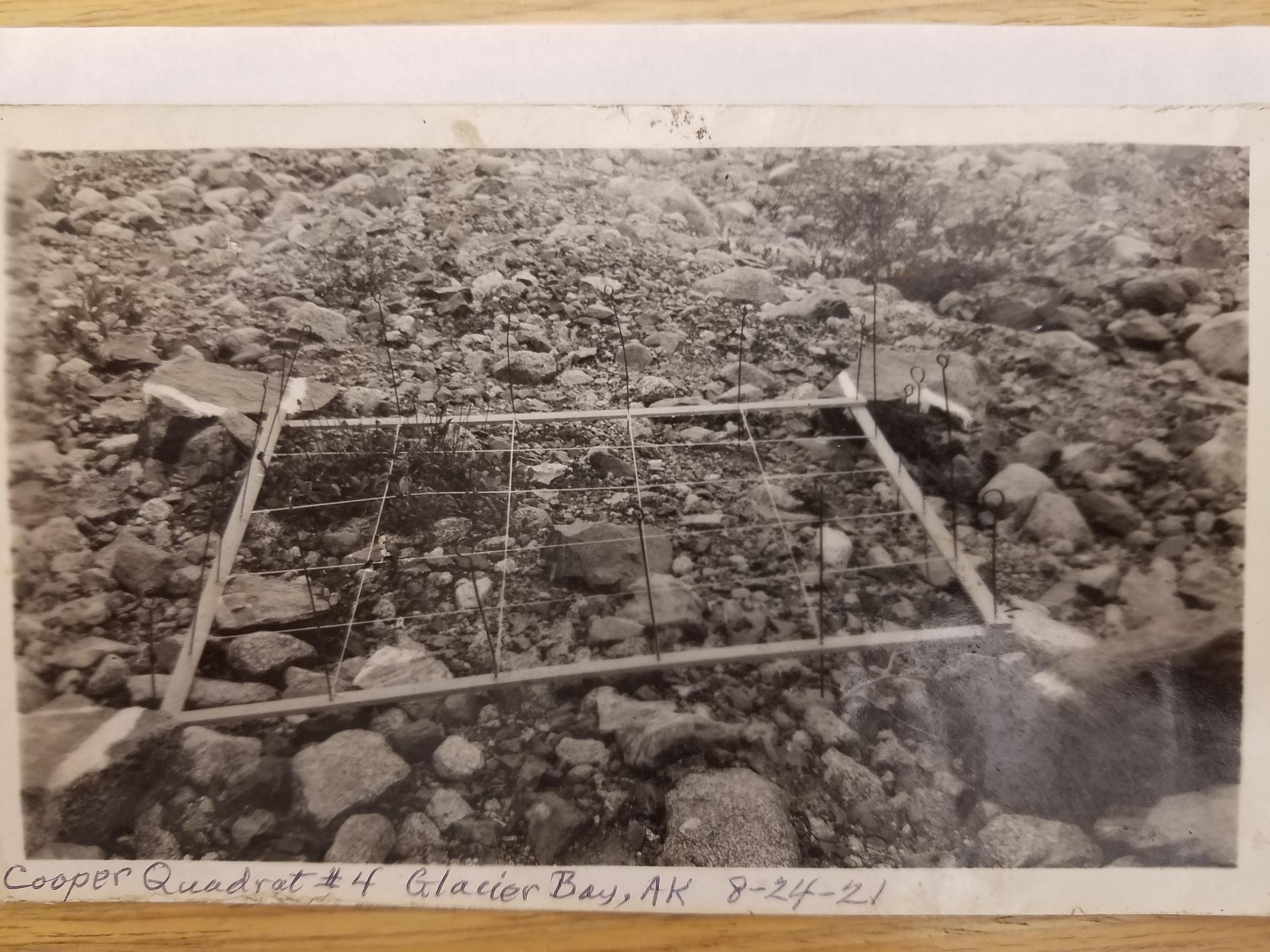 Example plot 93 years ago
