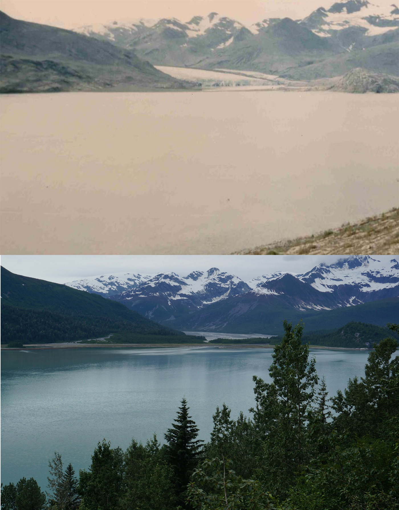 Hugh Miller Inlet in 1941 and 2016. Note the glacier in 1941 was near the island in 1916, and retreated considerably by the time the photo was taken. It is not visible in 2016, only mudflats remain in the distance.
