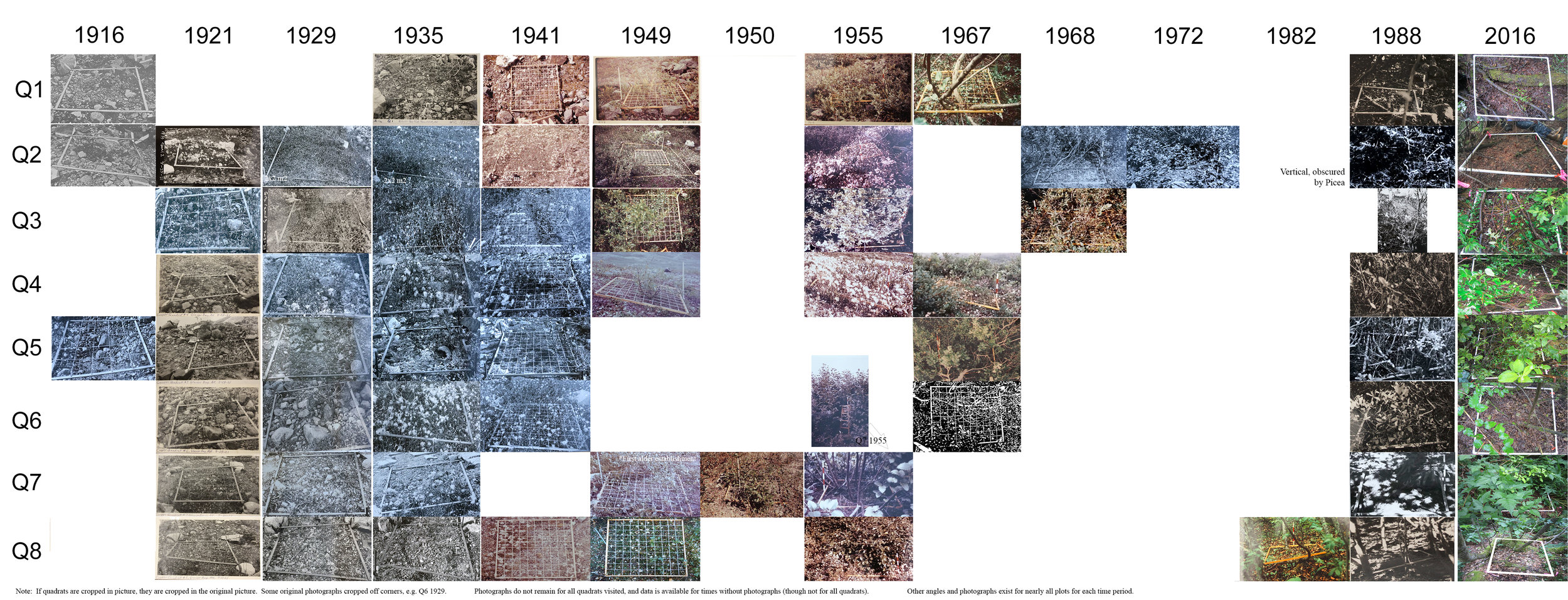 Current known pictures of the permanent plot network.  Click on image to see entire range (1916 - 2016).  Higher resolution available upon request, brian.buma@ucdenver.edu.