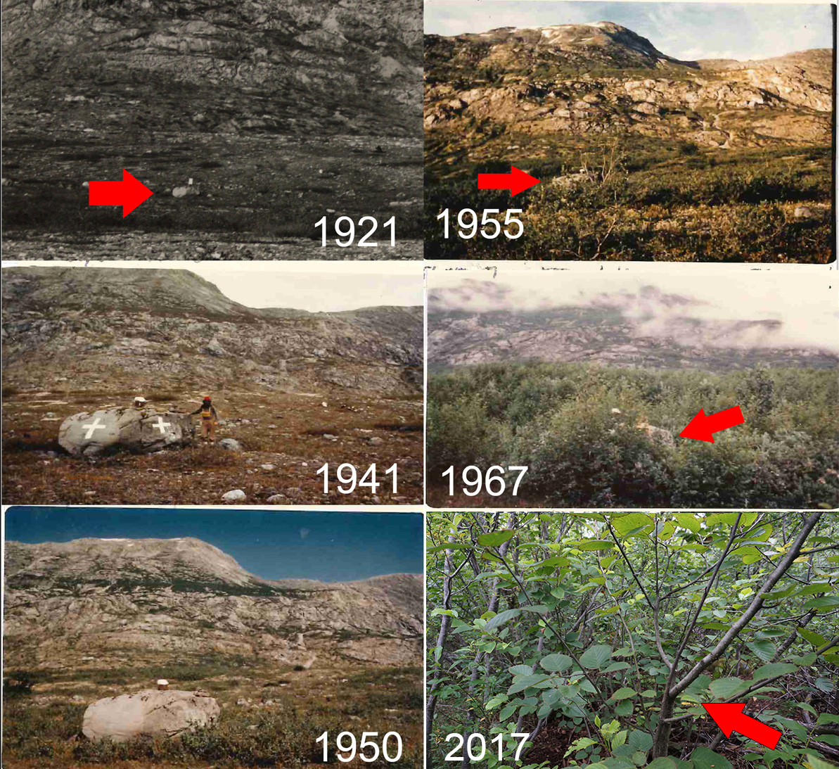 "Shots of ""Cross Rock,"" an important navigational tool.  All pictures from same perspective.  The 2017 image is taken from almost the identical spot as the 1967 image, though the rock is completely obscured."