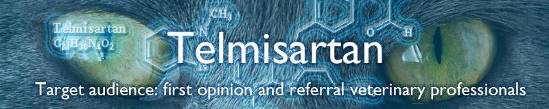 Telmisartan-banner.jpg