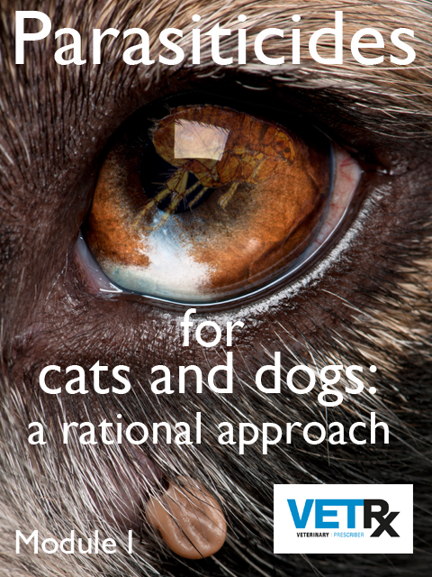 Parasite disease management is a key responsibility for veterinary professionals, and the RCVS Practice Standards Scheme requires that practices have an evidence-based parasiticide policy. However, the area is complicated because cats and dogs need tailored management, there is an overwhelmingly large choice of parasiticide products, and very intense promotional activity by drug companies. This module is the introduction to a series of modules on management of the key parasites that affect cats and dogs in the UK. The modules will help with the development of an evidence-based parasiticide policy.
