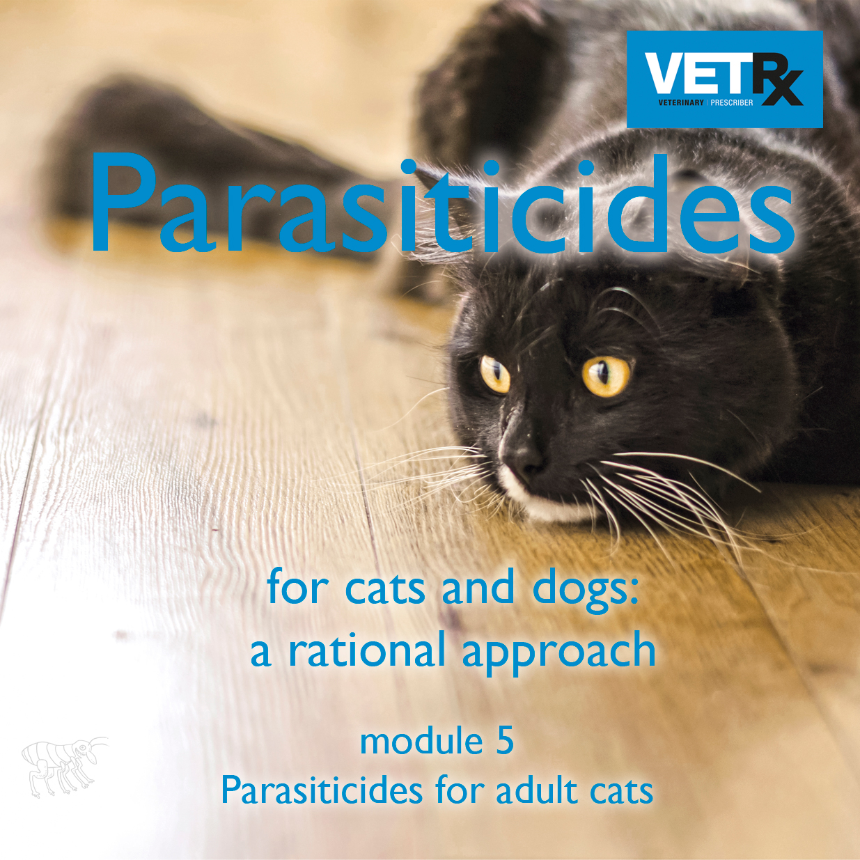 Why do this module?   Control of parasites in cats is a key responsibility for veterinary professionals. The area is complicated because therapy must be suited to each cat, there is an overwhelmingly large choice of parasiticide products on the market and very intense promotional activity by drug companies. The aim of this module is to help veterinary professionals use parasiticides rationally. It covers the five main parasites that affect cats in the UK and the parasiticide drugs used to treat them, and outlines the different approaches to parasite control. The module will help readers become familiar with the full range of parasiticide products through integration of the comprehensive  Parasiticide Guide .