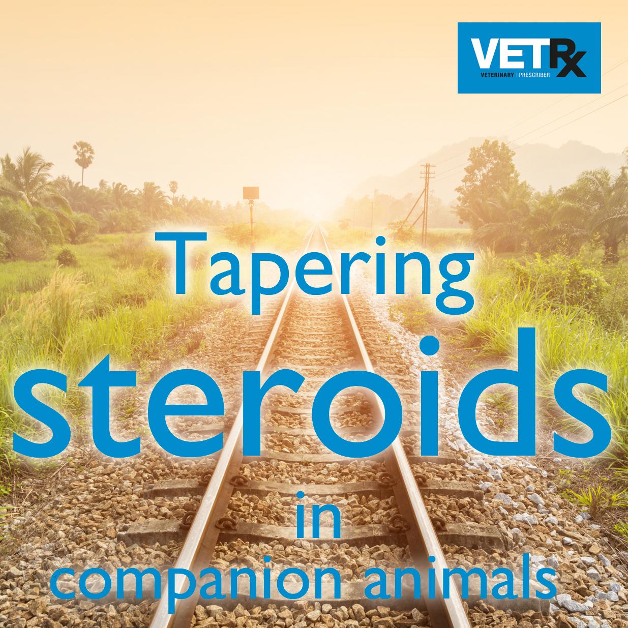 tapering-steroids-summary-block.jpg