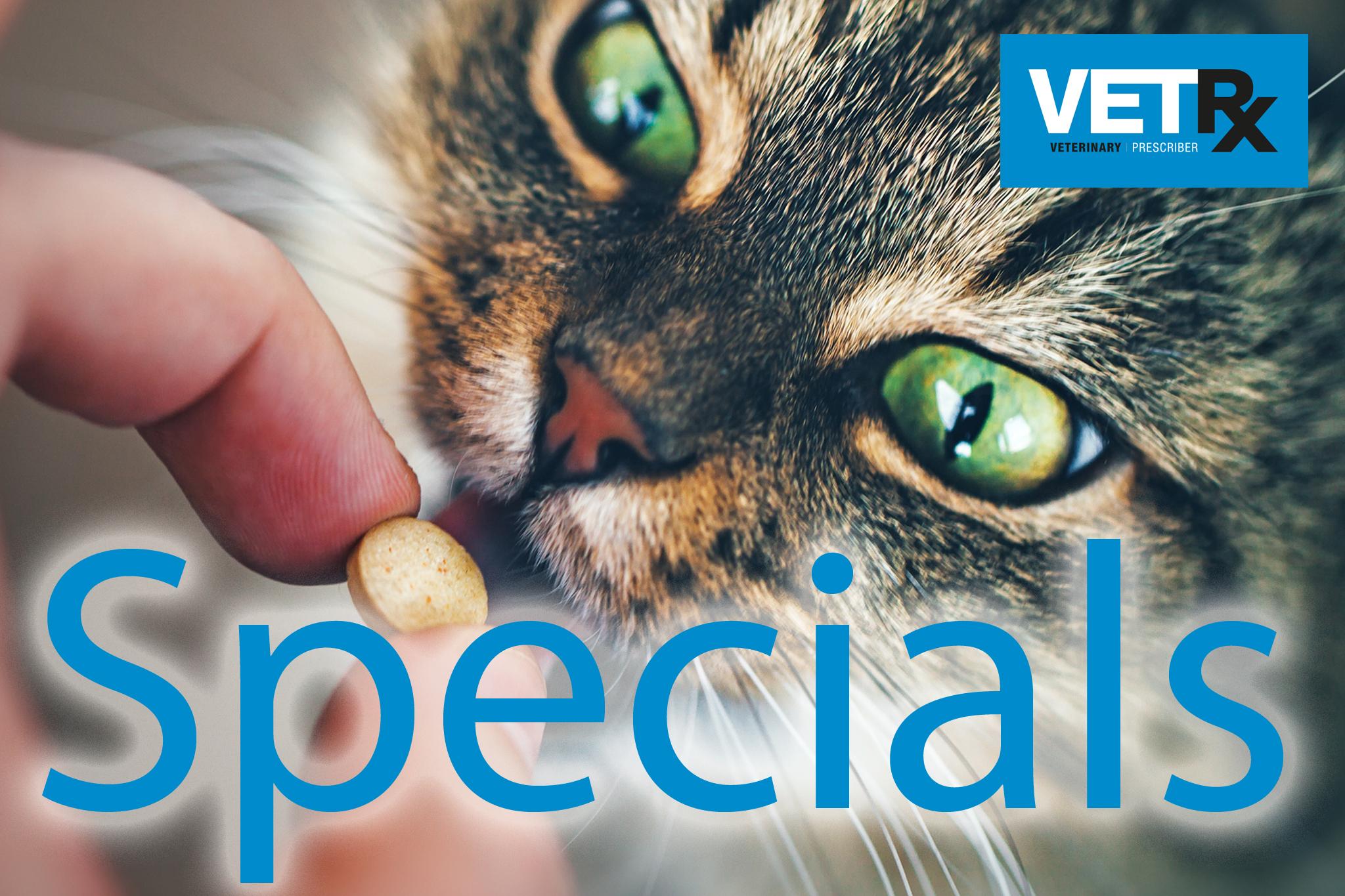 Specials-02.jpg