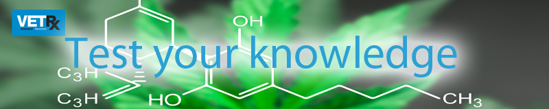CBD-test-your-knowledge.jpg