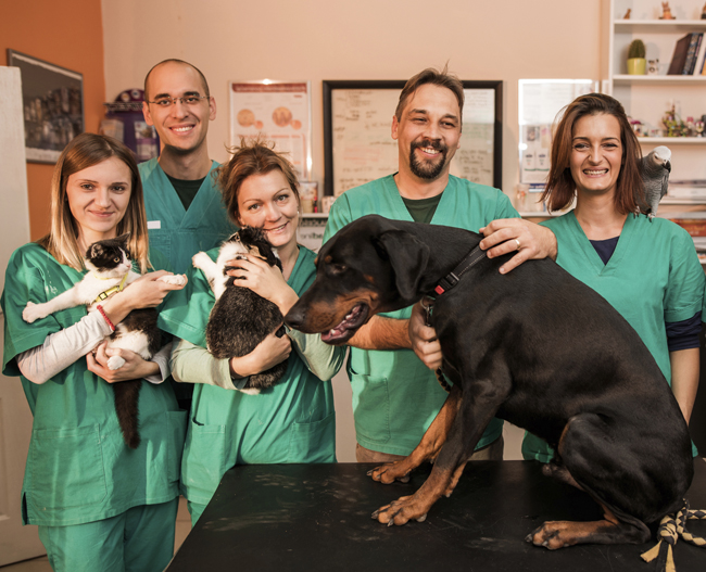 A group of happy vets with animals in the surgery glad they have subscribed to  Veterinary Prescriber