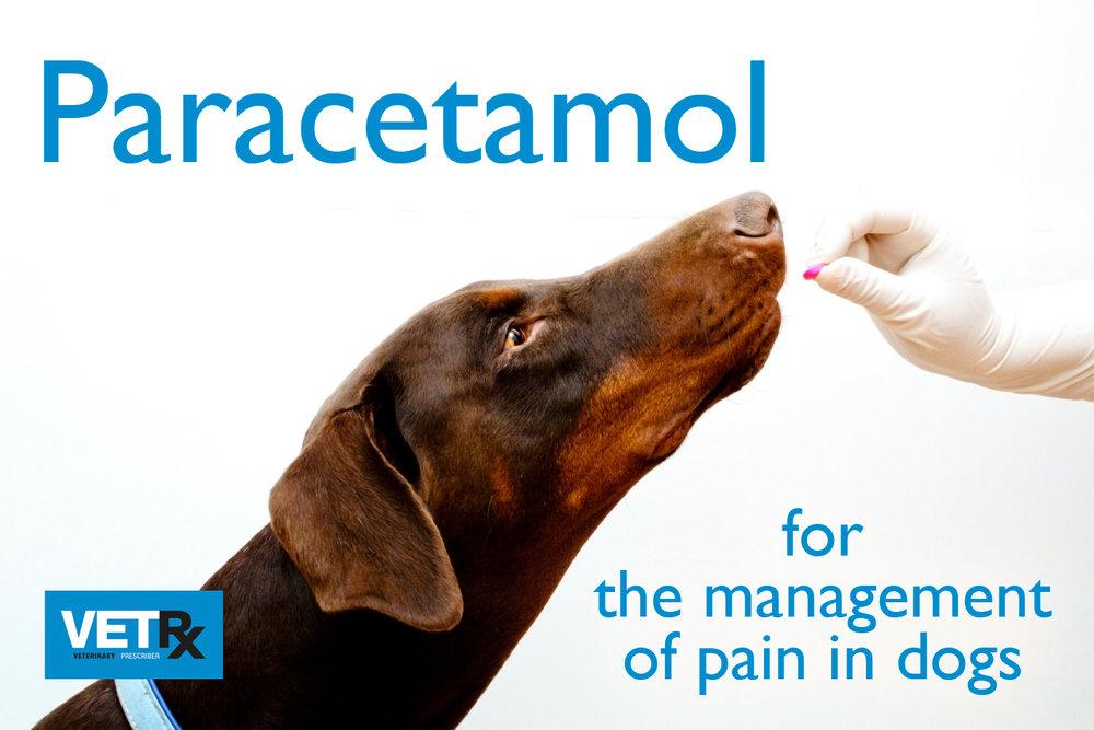 Subscribers-Content - Veterinary Prescriber