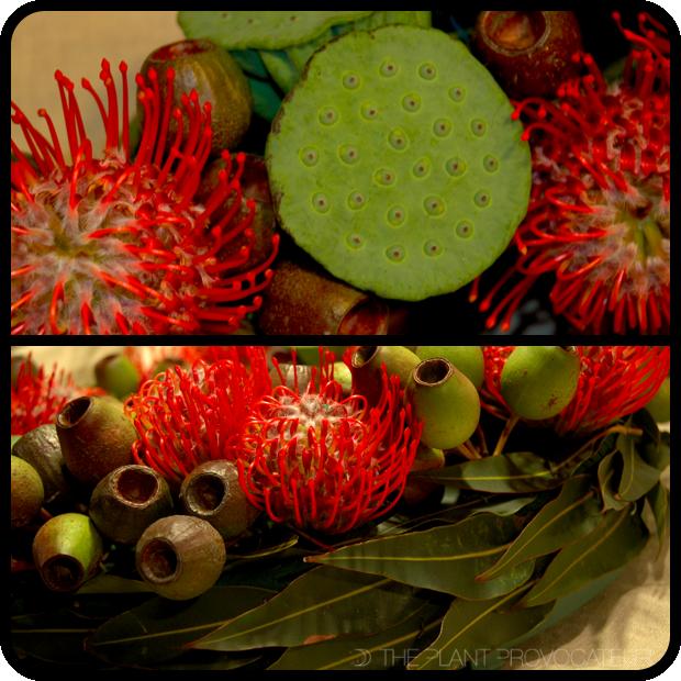 |Pincushions + Pods Wreath Details|