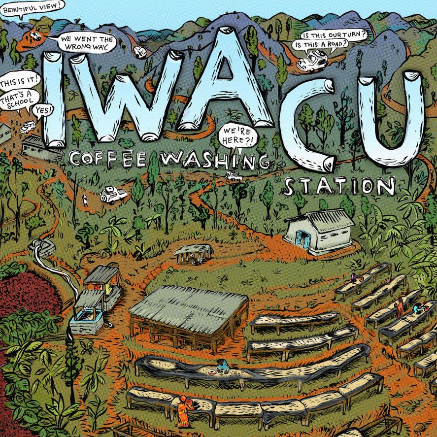Iwacu Coffee Washing Station