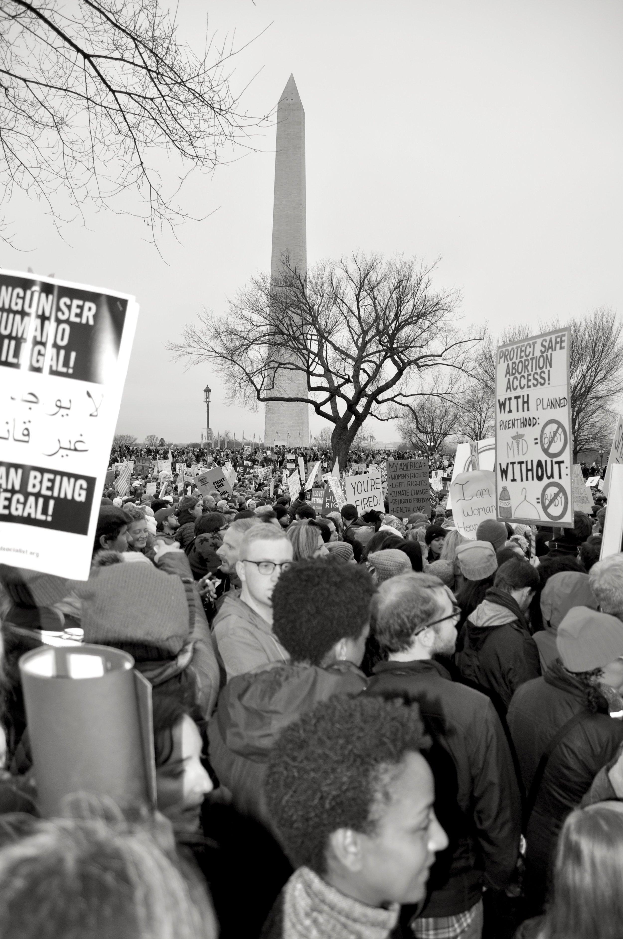 Monumental Protest T.JPG