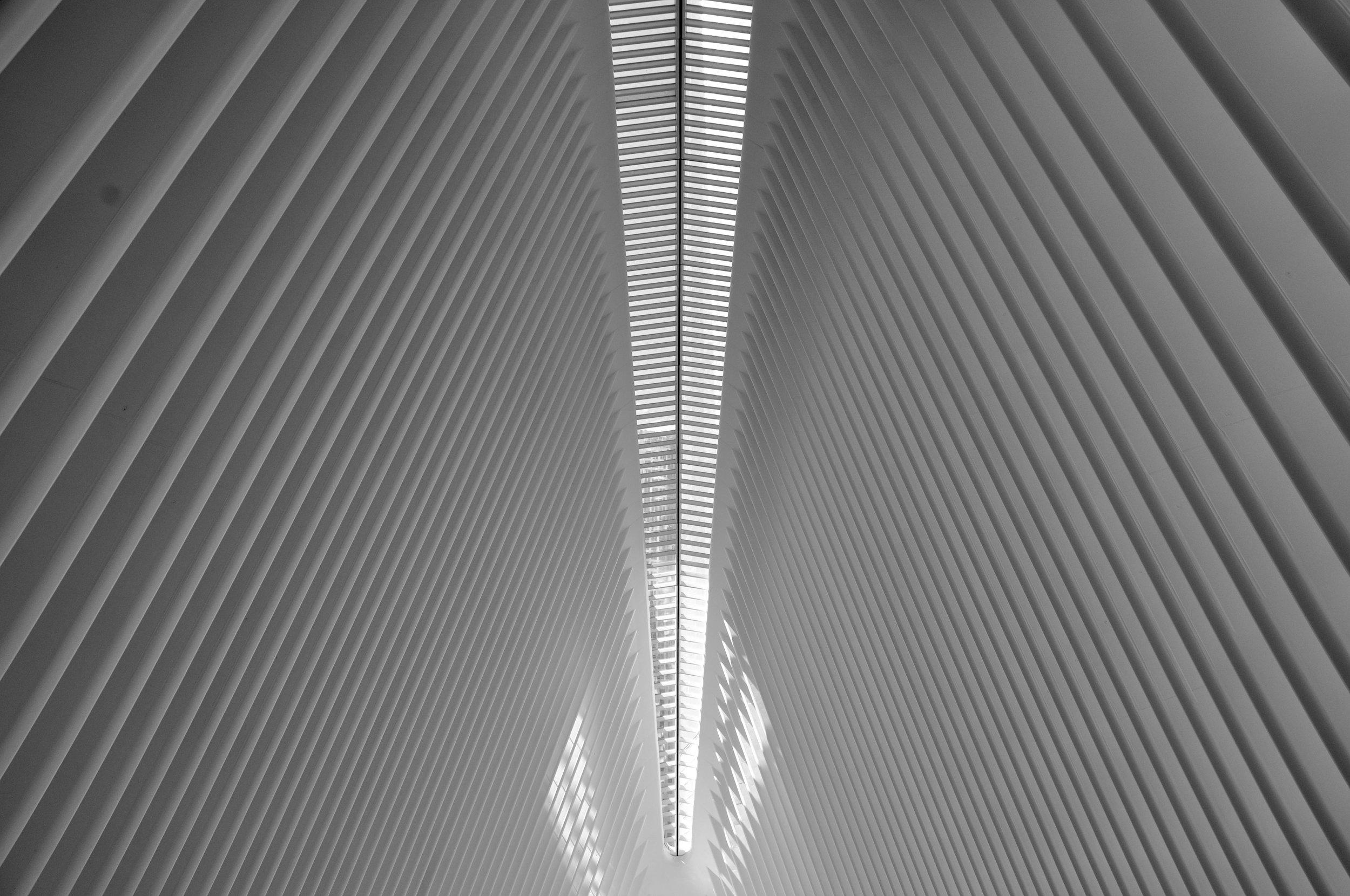Oculus Roof T.JPG
