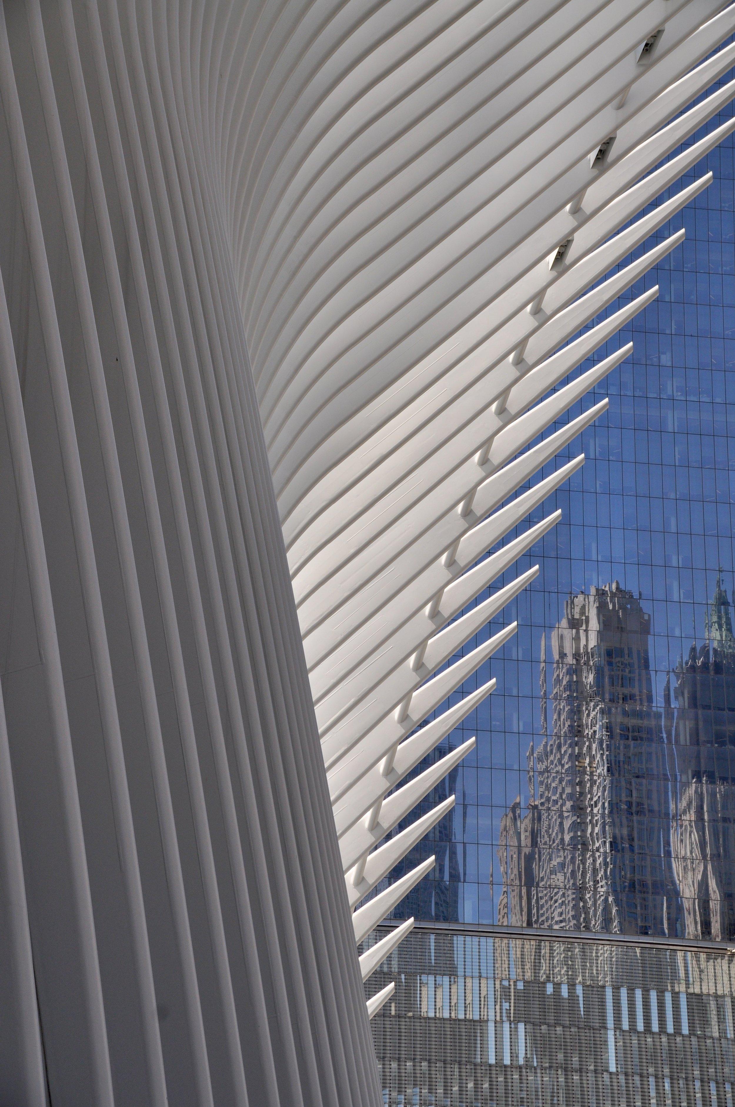 WTC Reflection T.JPG