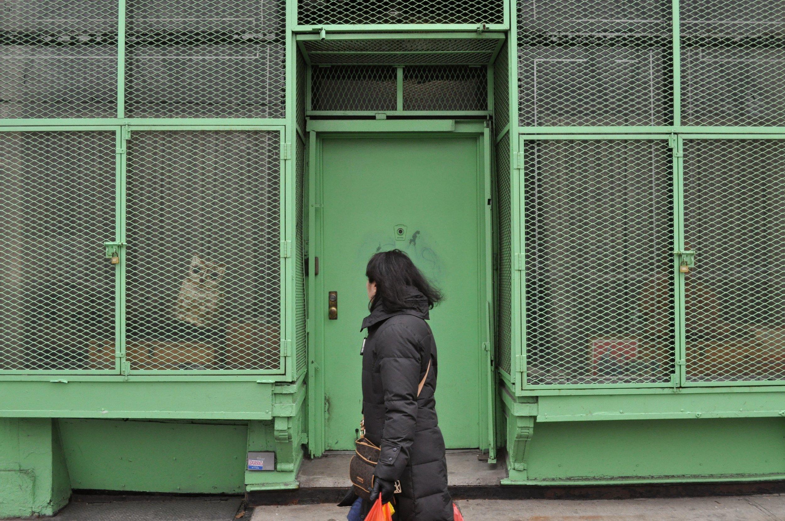 Window Owl T.JPG