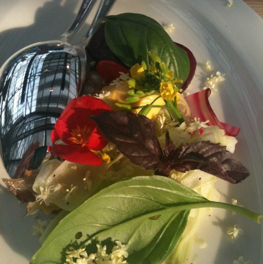 Flowers and Salad.png