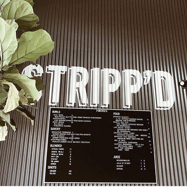 Views from the Stripp'd (📸: @kernoschak15)