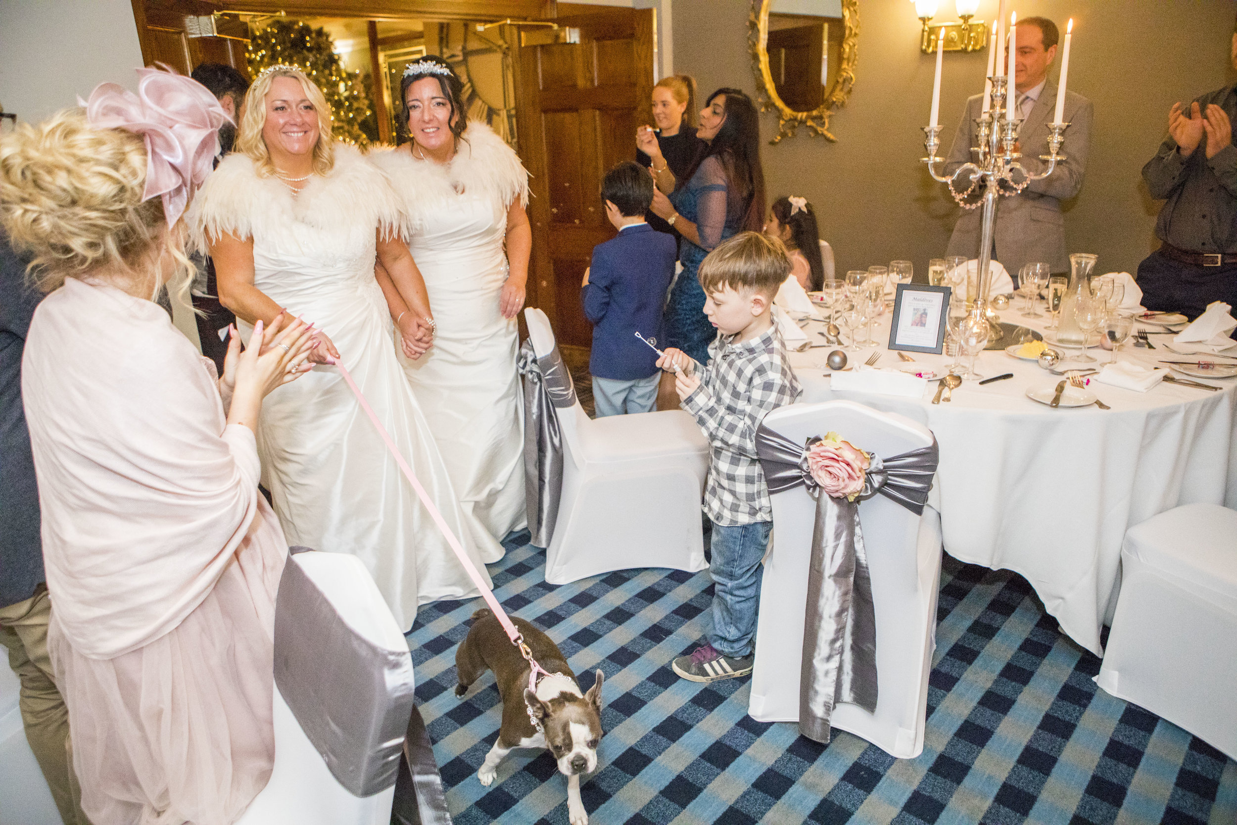 bride with a dog at a wedding at Bowburn Hall Hotel