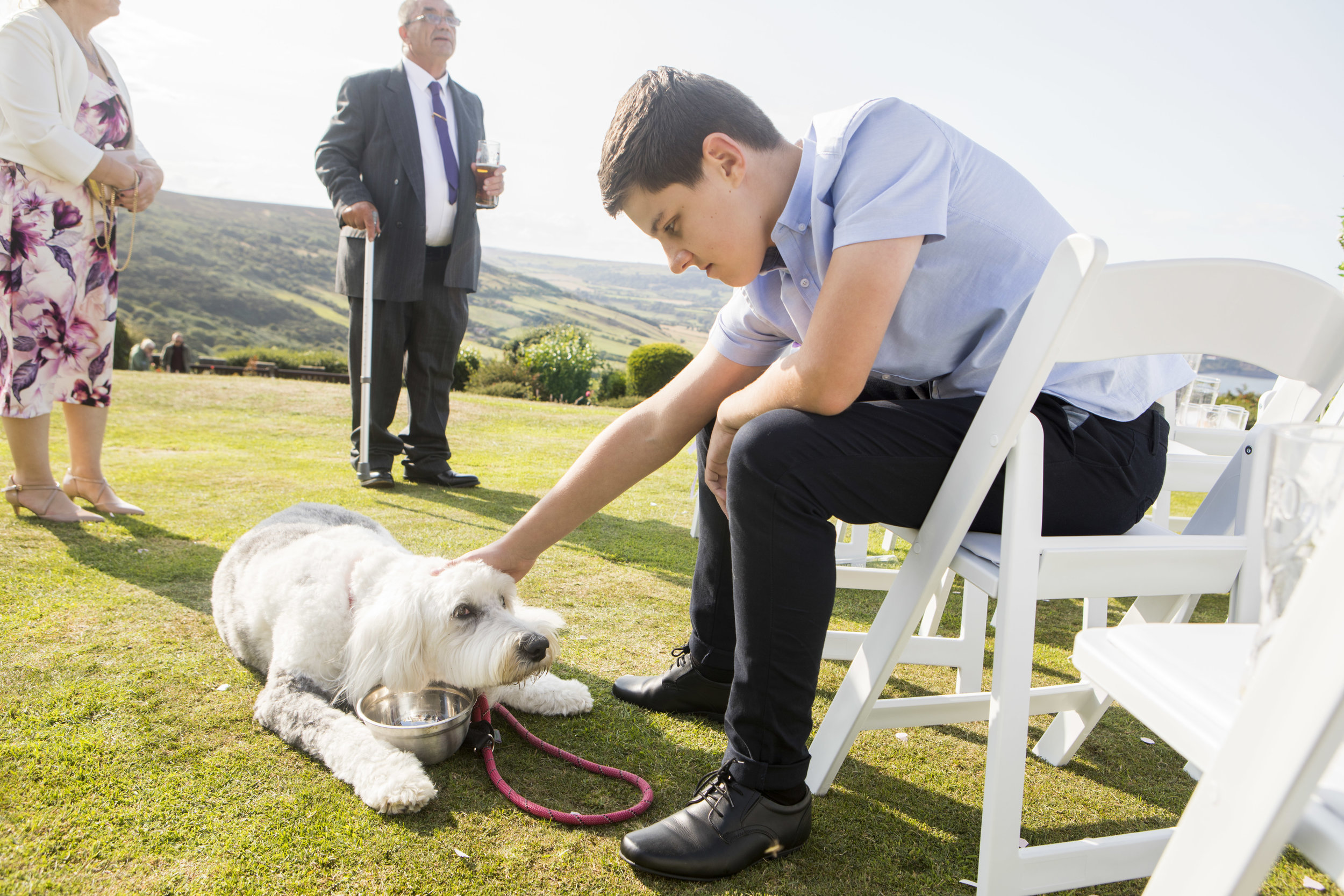 a dog at a wedding