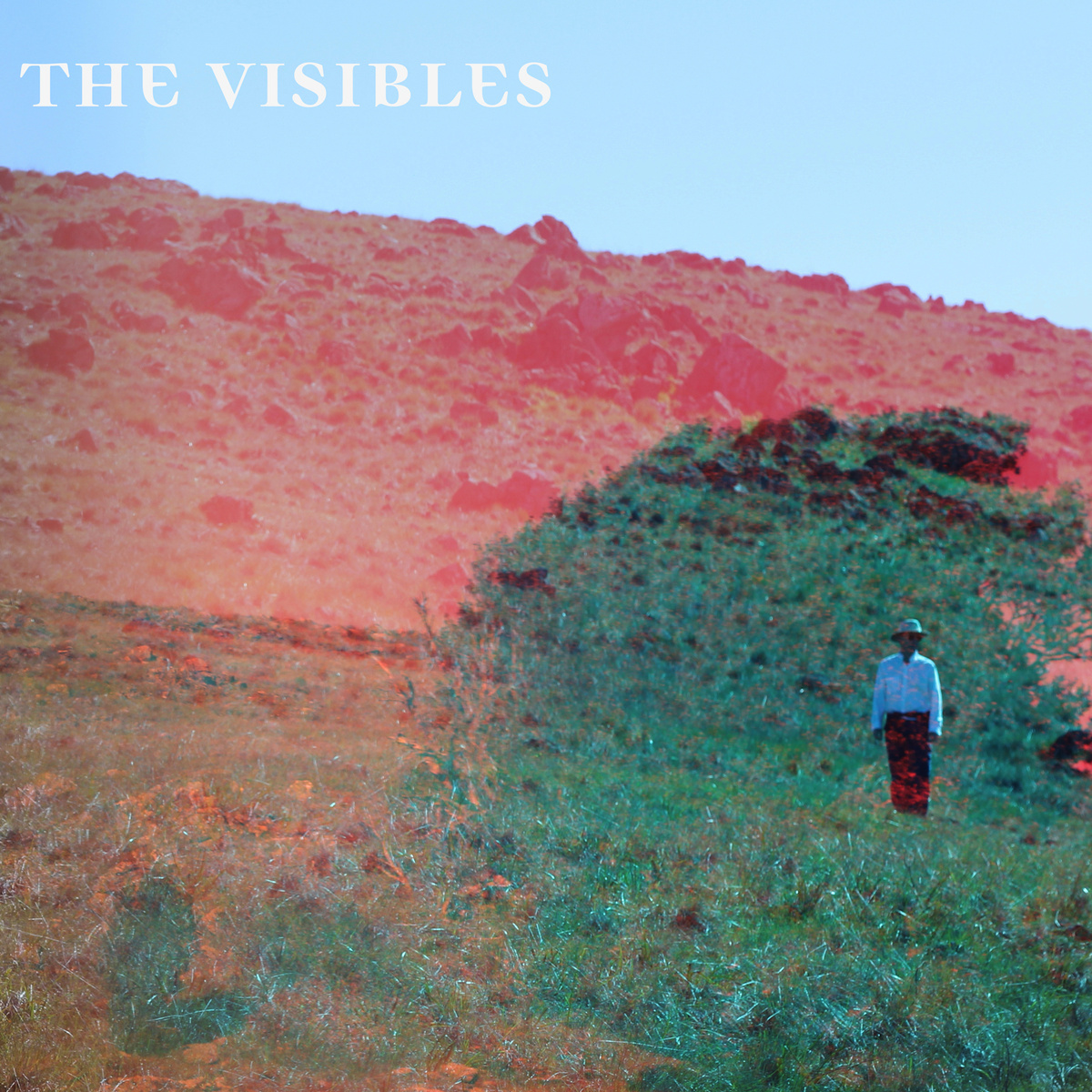 the visibles.jpg