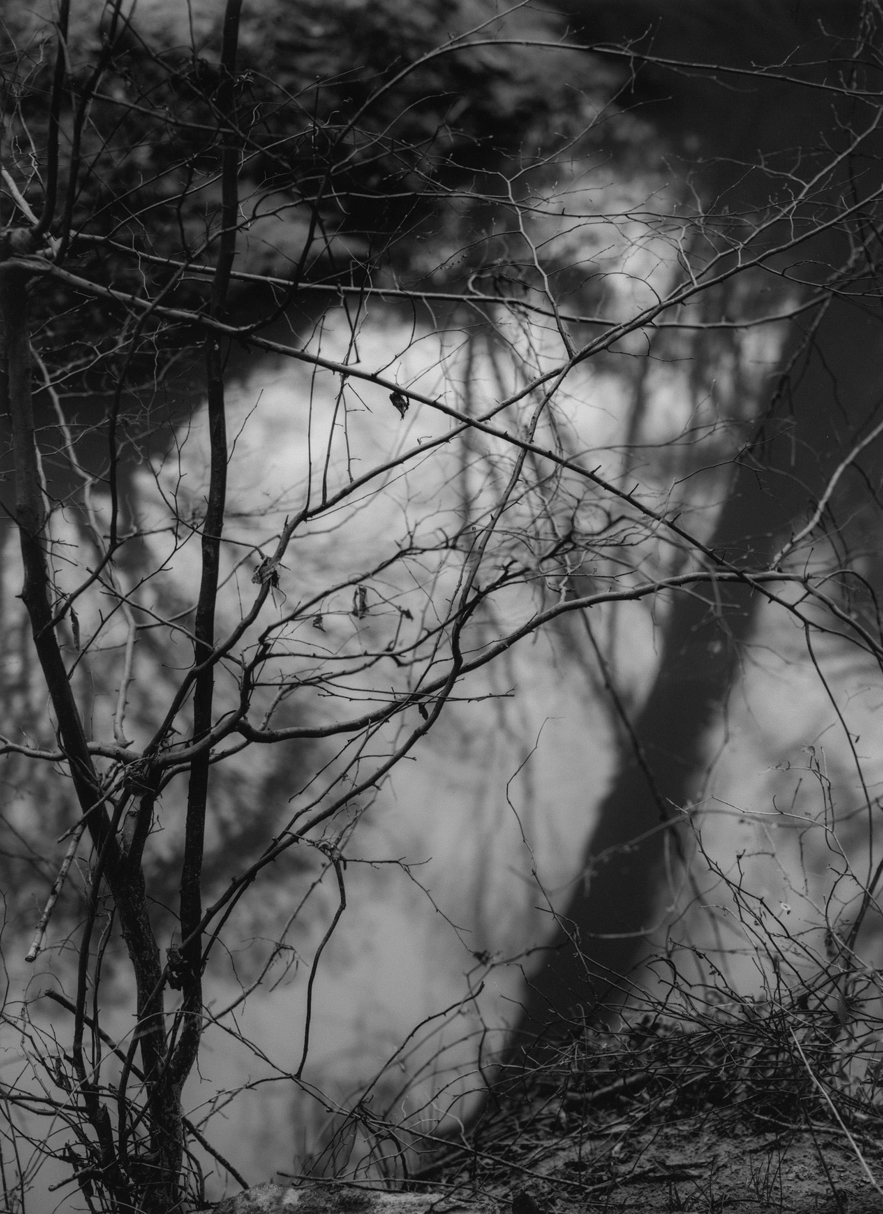 18_creek2.jpg