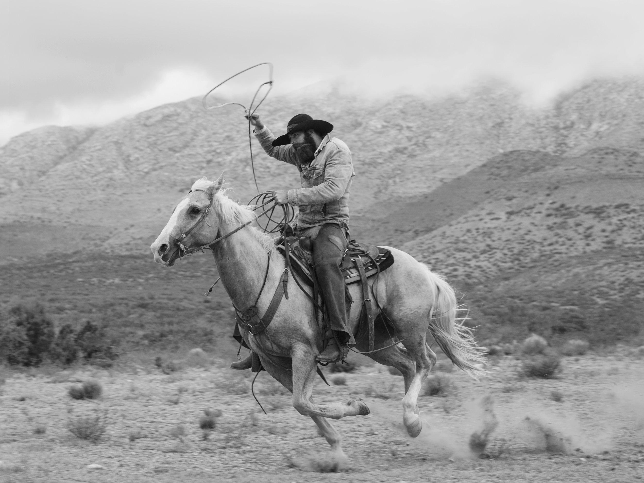 horse_rider-1.jpg