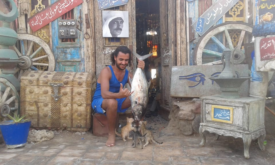 Why not Dahab?? - A story with a man with cats in sea side city in Egypt
