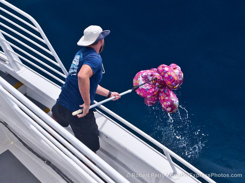 Augie gaffs balloon debris from surface 2014 10-15 SB Channel-a-006-L.jpg