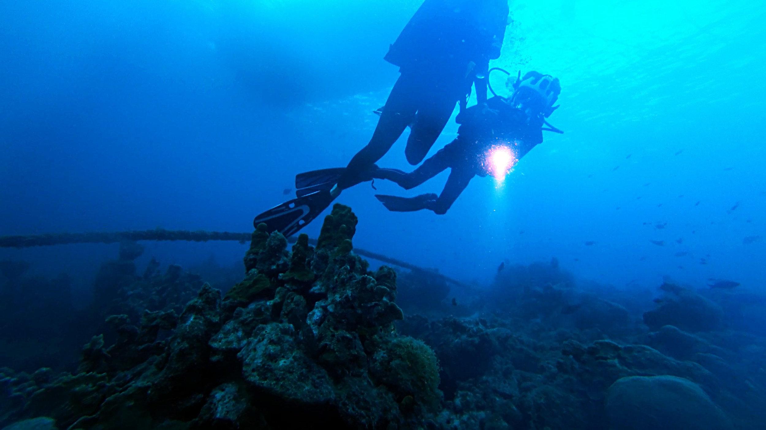 Diving - Connor views sea mound.jpg