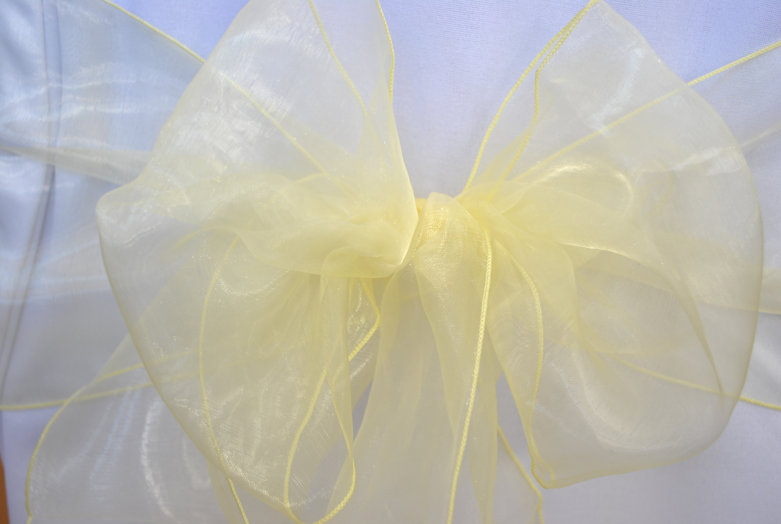 Light Yellow Organza