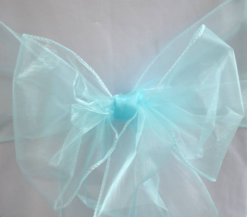 Tiffany Blue Organza