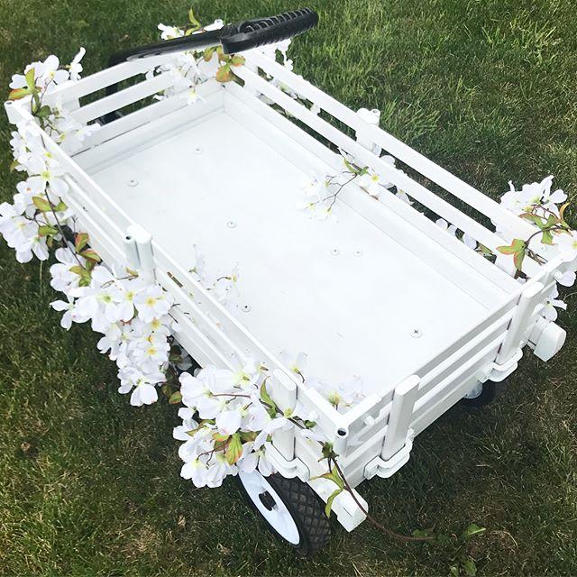 Little White Wagon