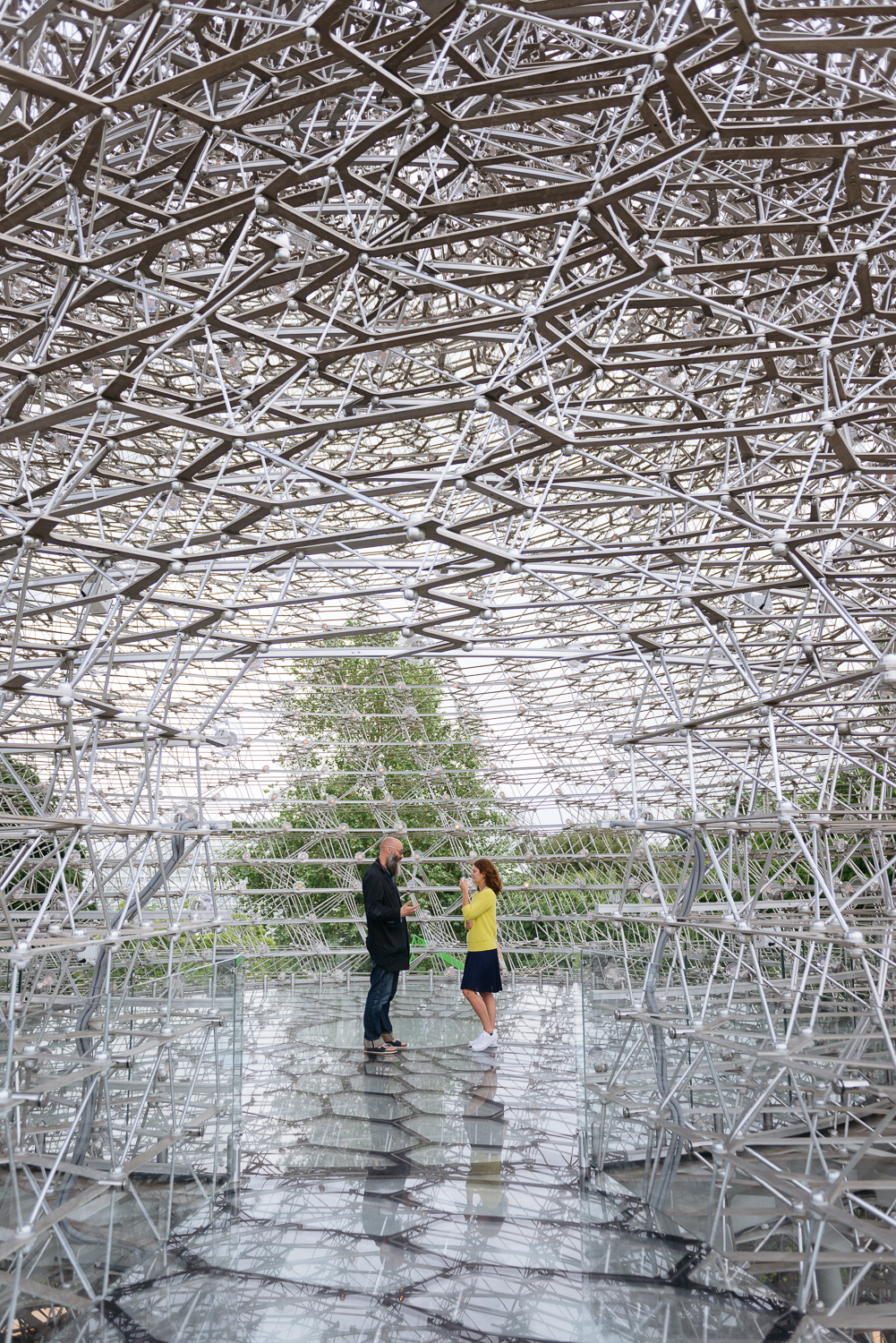The Hive at Kew. Photograph by Dacian Groza