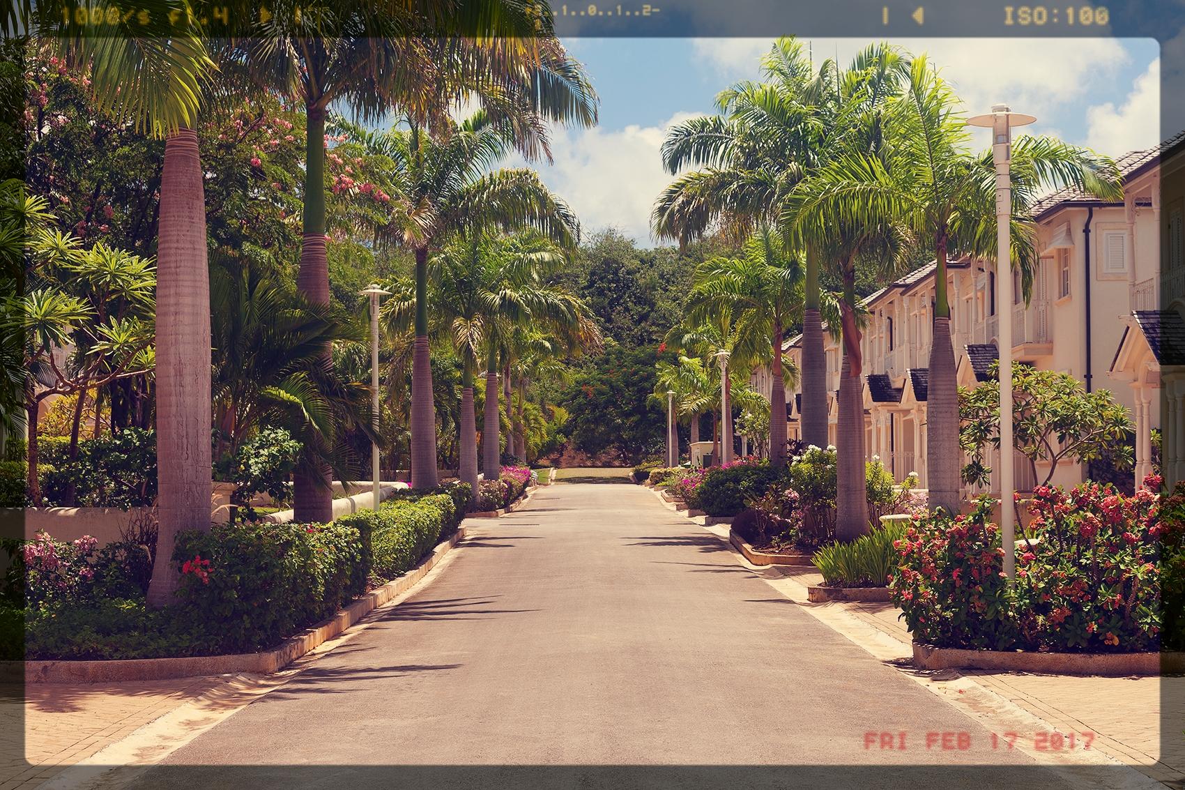 battaleys street.jpg