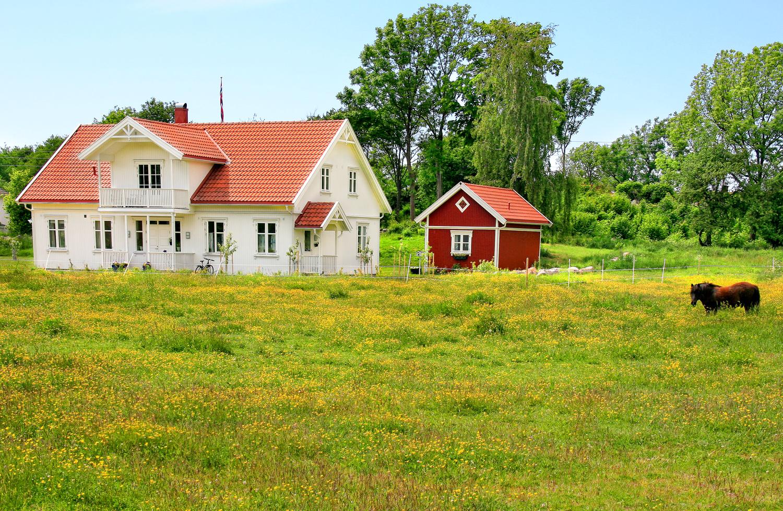 Forsommer på Søndre Sandøy. Noe av det som gjør Søndre Sandøy til et spennende og levende øysamfunn er alle de små gårdsbrukene man kan betrakte på så mange steder på øya.