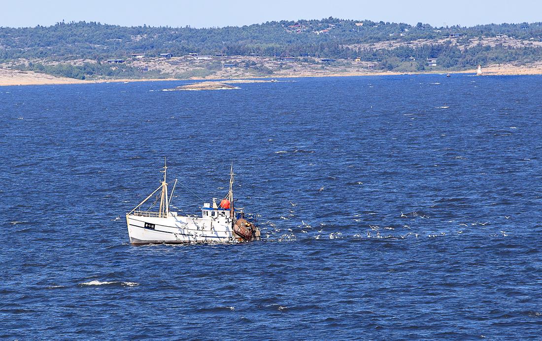 Det meste av fisket fra fiskebåtene til Fjordfisk foregår sørvest for Hvaler. I bakgrunn på bildet skimtes Hvaler med Asmaløy med Brattestø, og i midten og til venstre sees store deler av Spjærøy.
