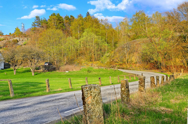 En tur på Dypedalsveien om våren anbefales på det varmeste. Veien slynger seg gjennom et vakkert landskap med husmannsplasser, flotte hytter og gamle «Hvalerhus». På bildet er det gjerdestolper av stein som er så klassiske for de gamle landeveiene på Hvaler. Her fra Dypedal på Spjærøy.