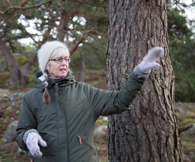 Etter den offisielle åpningen tok Anne-Sophie Hygen, prosjektleder for Middelalderprosjektet i Østfold, oss med over på Sjursholmen. Her fortalte hun om hustuftene som finnes her. – I middelalderen var Sjursholmen en ordentlig holme, adskilt fra Kirkeøy.