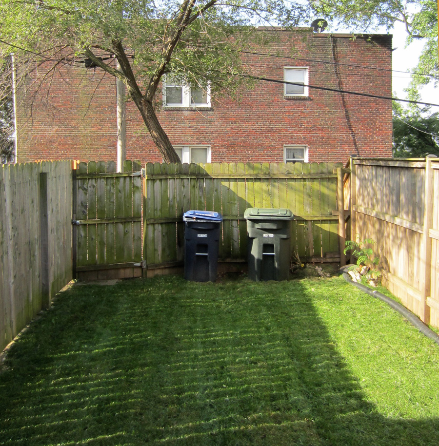 Before: A basic grassy yard