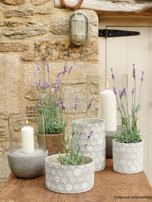 Artificial lavender plant £22.99 |Honeycomb and bee stone planters in 3 sizes - Tall £17.49 Small £10.99 and Short £16.49