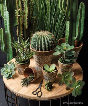 Geometric patterned planters perfect for cacti and succulents £