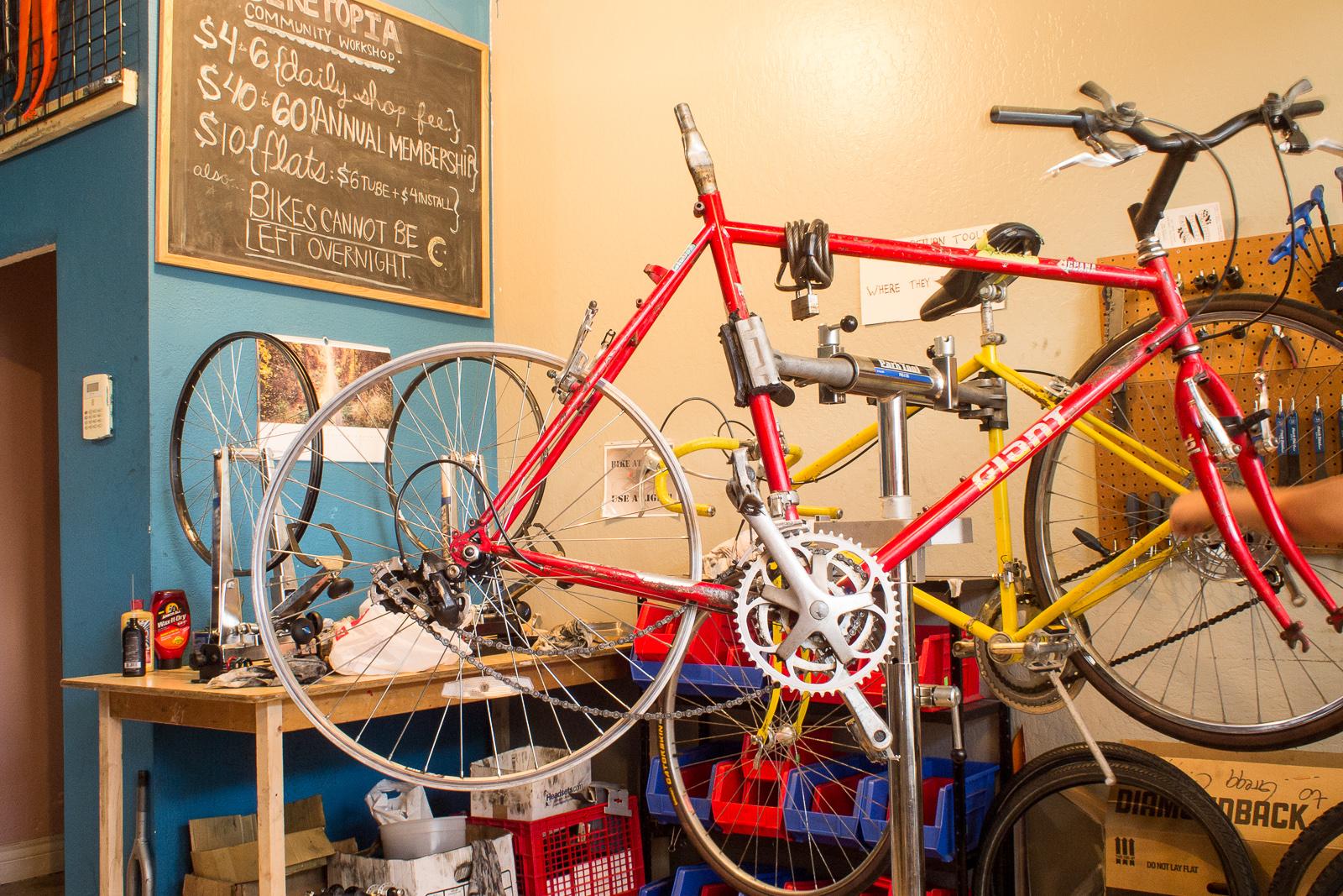 bikes in biketopia.jpg
